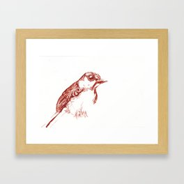Red Bird Hanging Out Alone Framed Art Print