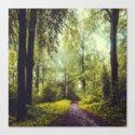 Dreamy Forest by dirkwuestenhagenimagery