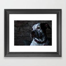 Lijla Framed Art Print