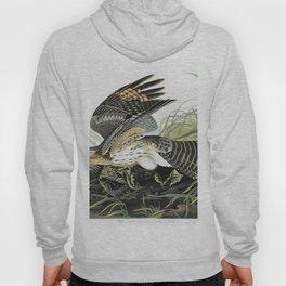 Winter Hawk - John James Audubon Hoody