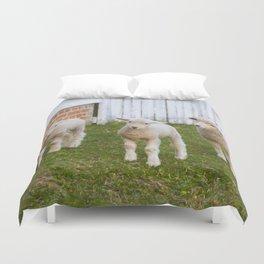 3 Little Lambs Duvet Cover