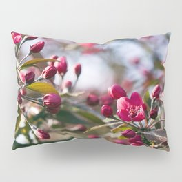 RED APPLE BLOSSOMS Pillow Sham