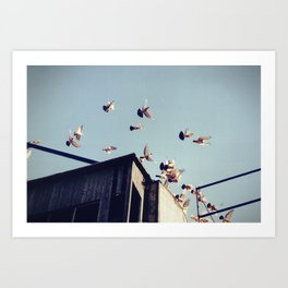 _____ Art Print