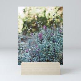 Purple Wildflower  Mini Art Print