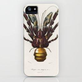 Coconut Crab (Birgus latroi) illustrated by Charles Dessalines D' Orbigny (1806-1876). iPhone Case