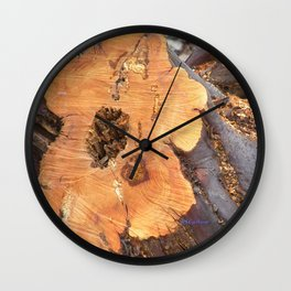 TEXTURES - Manzanita in Drought Conditions #2 Wall Clock