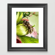 Wasp on flower 6 Framed Art Print