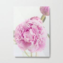 Fine Art Pink Peony Photography, Flower Metal Print