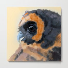 Brown-Blue Wood Owl Portrait Metal Print