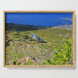 Yellow-crowned Night Heron Snack Serving Tray