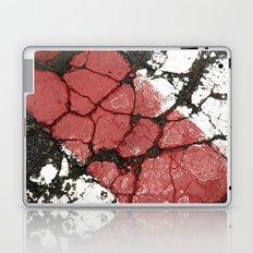 Freedom Trail Laptop & iPad Skin