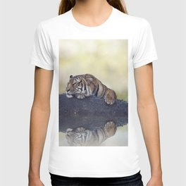 Bengal tiger resting on a rock near pond T-shirt
