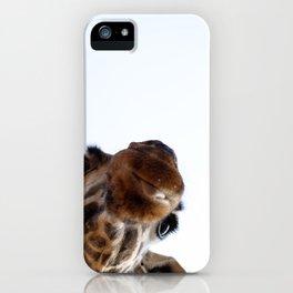 Playful Giraffe iPhone Case