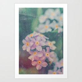 Blue Forget Me Not Botanical Study Art Print