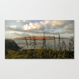 new zealand rough lands island and ocean view Canvas Print