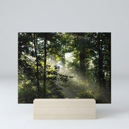 Forest Morning Mini Art Print