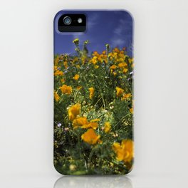 Orange Poppies on the Hill Side iPhone Case