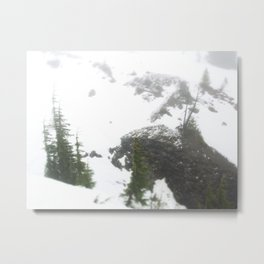 Buffs of Snow Metal Print