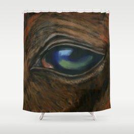 Arabian Eye DP160123a Shower Curtain