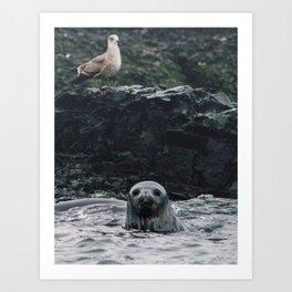 Leopard Seal Art Print