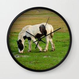 Gypsy Vanner Filly 5506 - Colorado Wall Clock