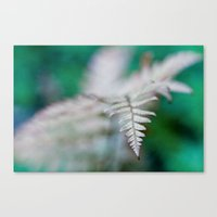 fern Canvas Prints featuring fern by Bonnie Jakobsen-Martin