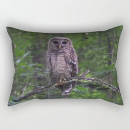 Juvenile Barred Owl Rectangular Pillow