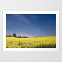 Brest Fields Art Print