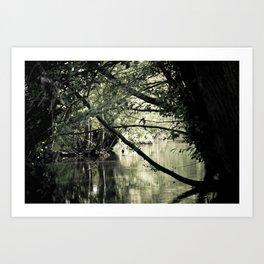 Enchanted forest IV Art Print
