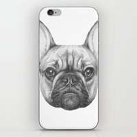 frenchie iPhone & iPod Skins featuring Frenchie by Victoria Novak