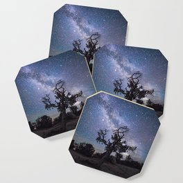 Astronomer's Tree Coaster