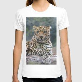 Aqua_Leopard_20180105_by_JAMColorsSpecial T-shirt