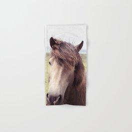 Welsh Horse Hand & Bath Towel