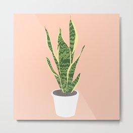 Snake Plant Illustration  Metal Print