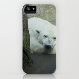Missing the North iPhone Case