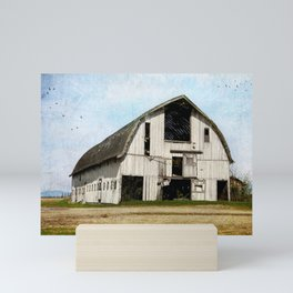 country barn Mini Art Print