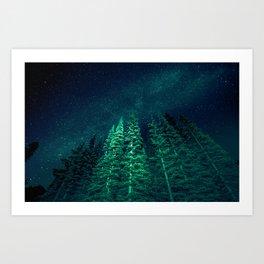 Star Signal - Nature Photography Art Print