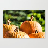 vegetable Canvas Prints featuring  autumn vegetable by Karl-Heinz Lüpke
