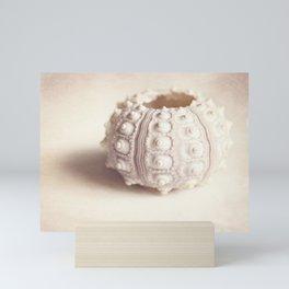sea urchin Mini Art Print