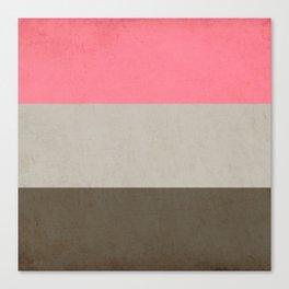 beauty stripes Canvas Print
