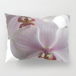 White orchids Pillow Sham