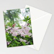 secret garden 14 Stationery Cards