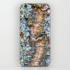 Lichen iPhone & iPod Skin