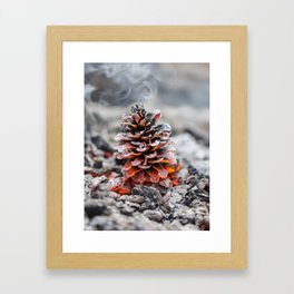 Winter Pinecone Framed Art Print