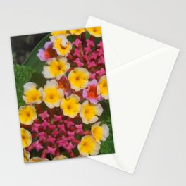 Small Yellow Tropical Flowers With Pink Buds Stationery Cards