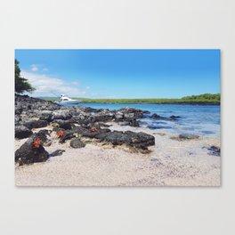 Galapagos Adventure Canvas Print