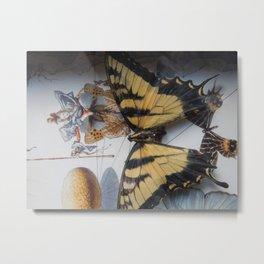 The Salvadorian Swallowtail Metal Print