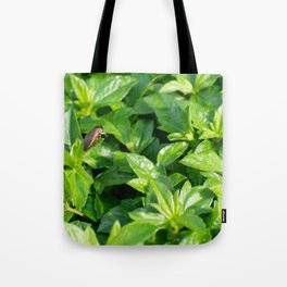 A roach's journey Tote Bag