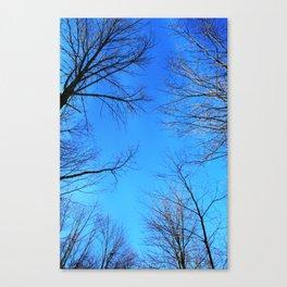 scratch the sky Canvas Print