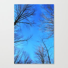 scratch the sky Canvas Print